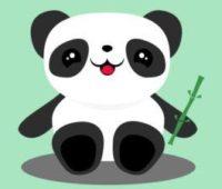 Raiola manda y no el panda. Concurso para emprendedores on line